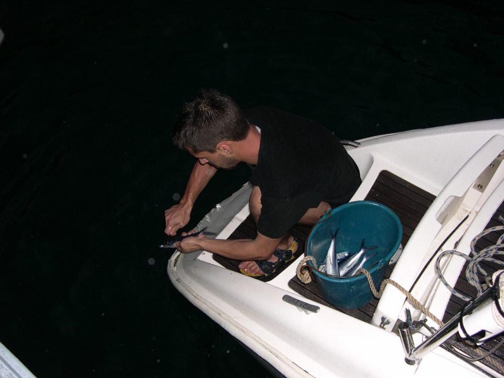 caraibes-janv-2008-catapoisson-volant-nettoyage