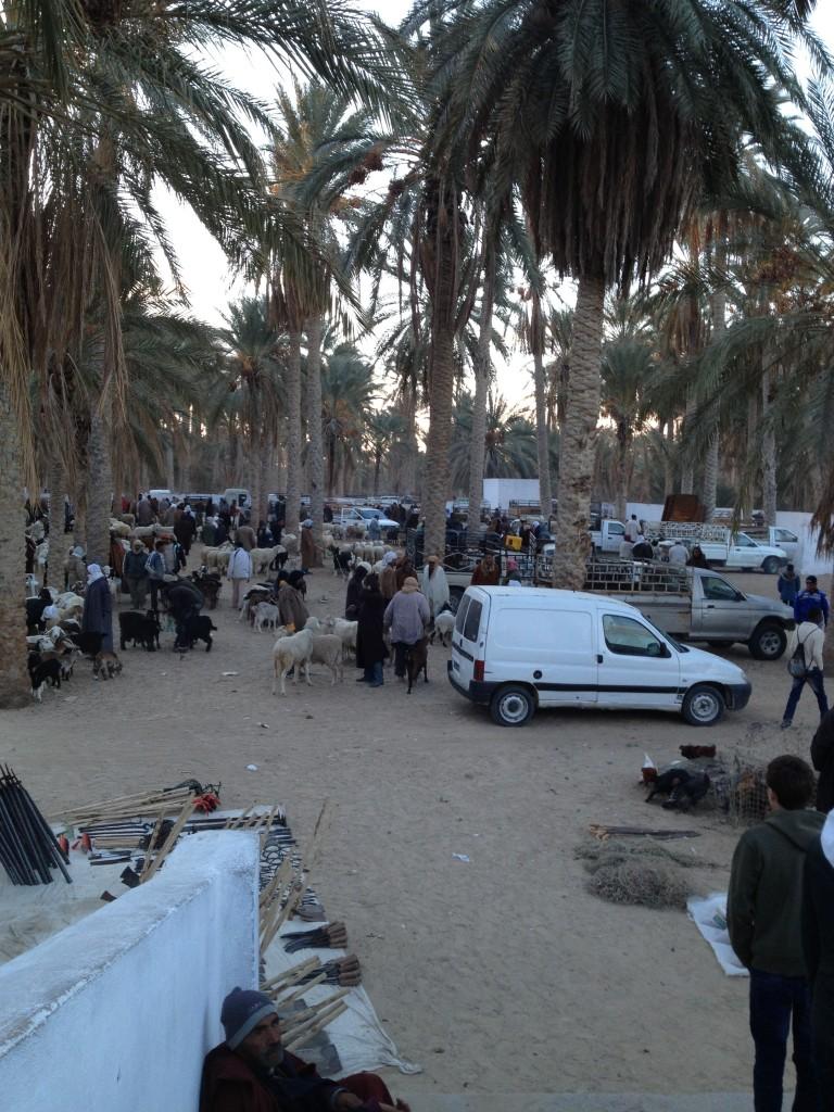 desert-tunisien-j5-marche-douz