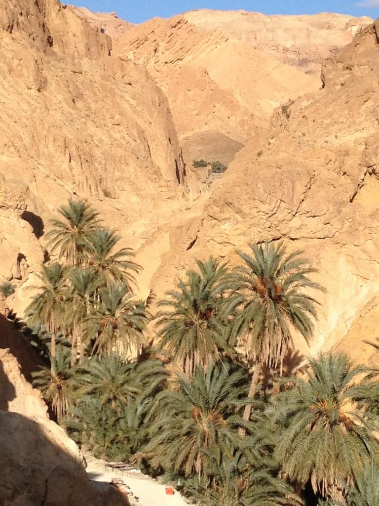 desert-tunisien-j6-oasis-montagne
