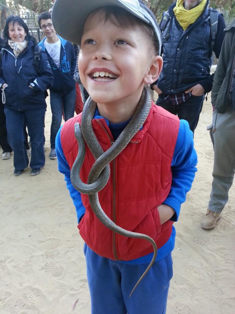 desert-tunisien-j6-zoo-toozeur-serpent