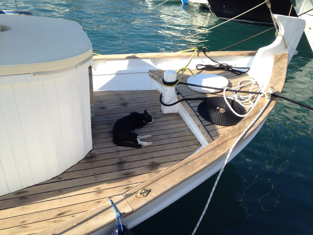 chat-ios-croisiere-cyclades-ete-2016