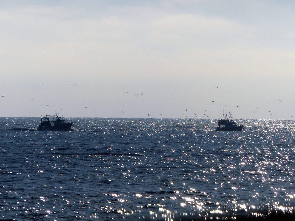 j2-arrivage-bateau-guil-29