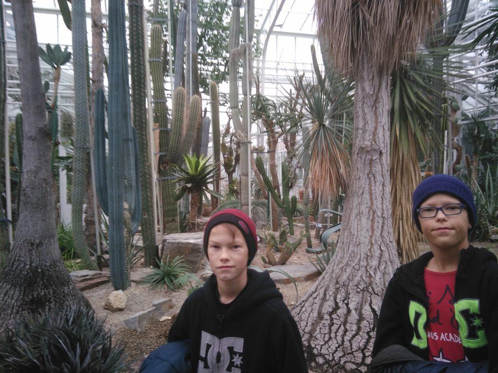 j2-jardin-botanique-cactus-munich-noel-2016