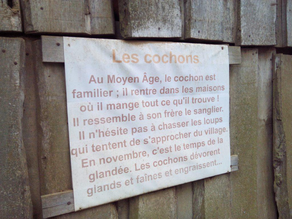 2014-mai-cochons-utiles-guedelon-MFV