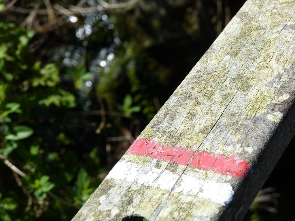 avril-2017-MFV-chemin-rando-bretagne
